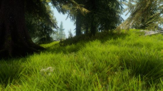 Green Grass For Enb 地形と風景 Skyrim Mod データベース Mod紹介・まとめサイト