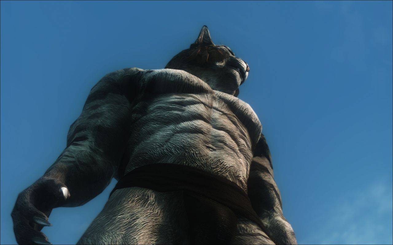 Muscular Khajiit Textures And Skeleton モデルテクスチャ Skyrim