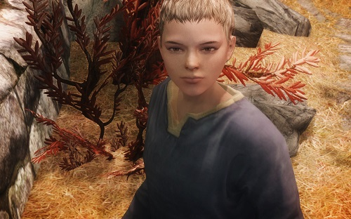 RS Children Overhaul NPC - 子供 - Skyrim Mod データベース MOD紹介