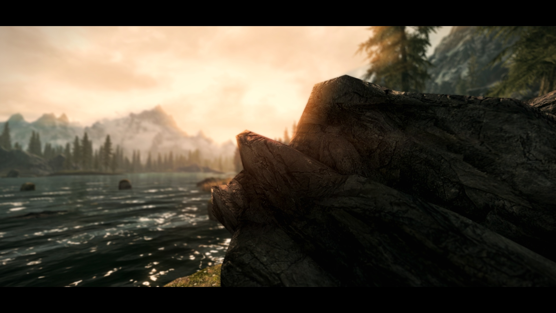 skyrim reloaded with enb