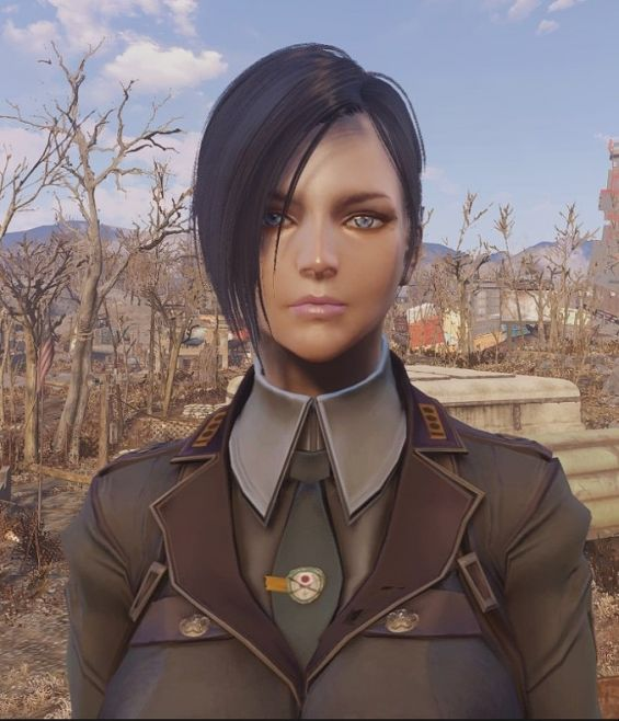 Ammco bus : Fallout 4 face presets